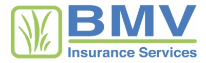 BMV Insurance Services logo